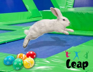 Leap's Easter Hours